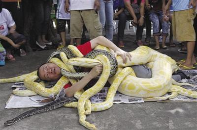 100米大蟒蛇图片