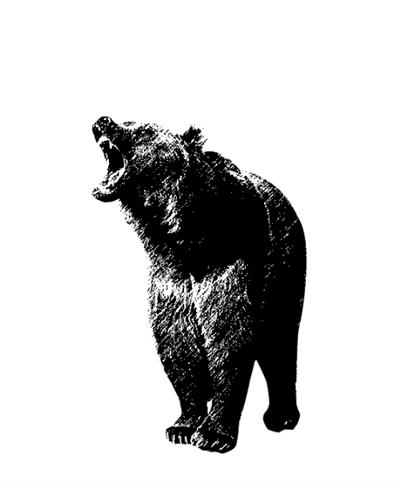 动物园棕熊咬死饲养员