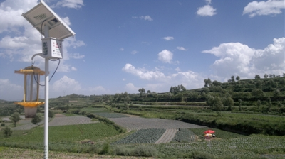 实现农业结构优化,土地效益提升