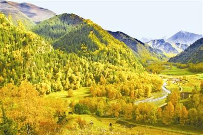 祁连河沟自然风景区